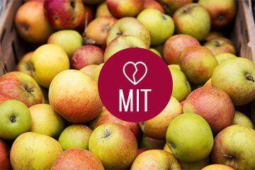 Mit o jabłkach