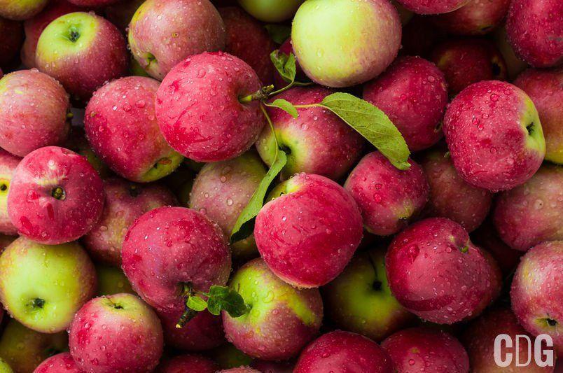 Tło z czerwono zielonych jabłek